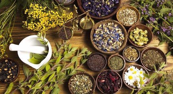فراوری دارویی از گیاهان بومی ایران برای برطرف درد زانو