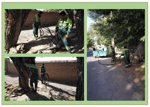 شروع عملیات هوادهی درختان راستا شاه جوی آب بلده فردوس