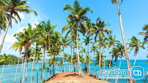 بهترین زمان سفر به سریلانکا، چه زمانی است؟