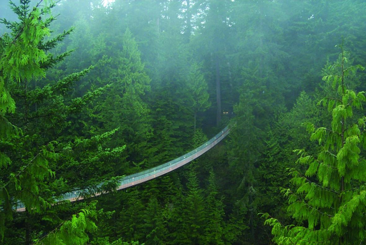 پل معلق کاپیلانو، جاذبه جهانی در دل جنگل های کانادا