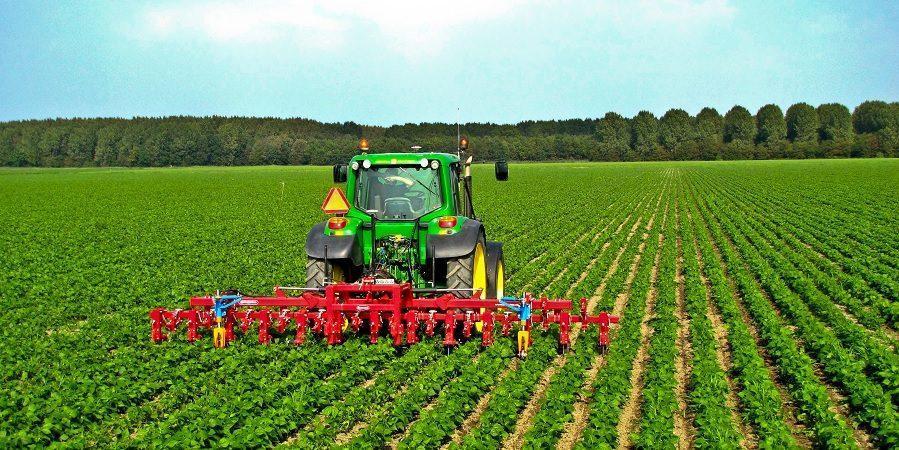 اقتصاد کشور باید کشاورز محور باشد