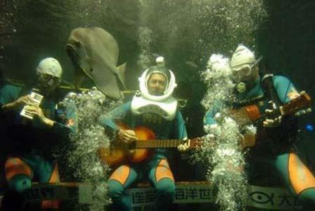 اجرای ارکسرت سمفونی زیر دریا